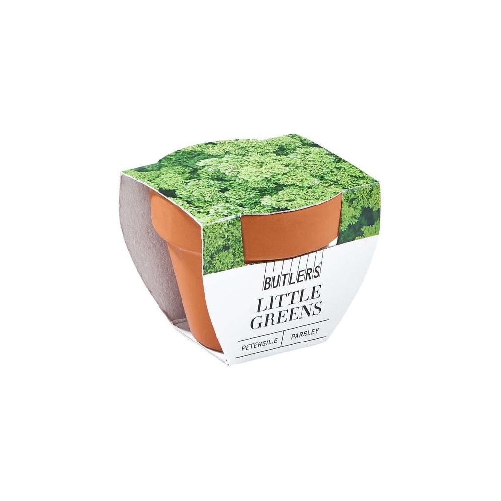 LITTLE GREENS Mini květináč s petrželí