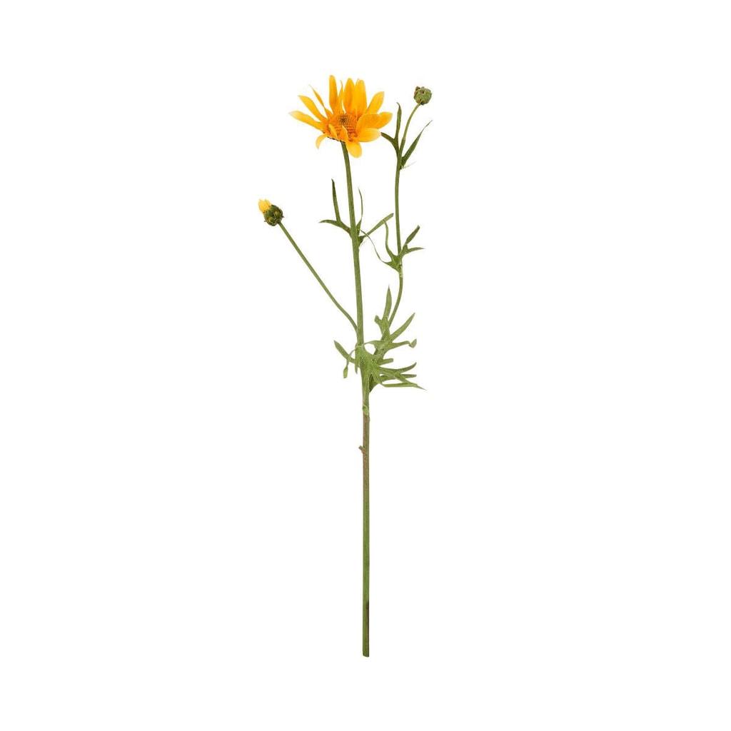 FLORISTA Sedmikráska 56 cm - žlutá