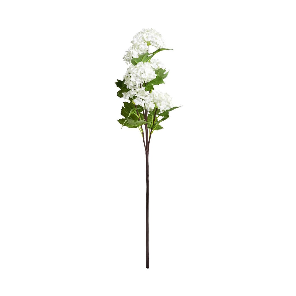 FLORISTA Větvička kalina 60 cm - bílá