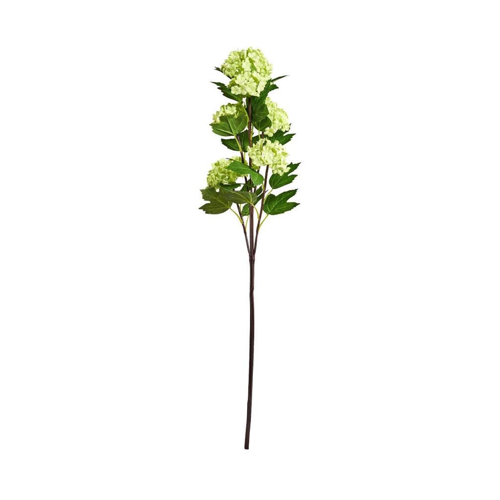 FLORISTA Větvička kalina 60 cm - zelená
