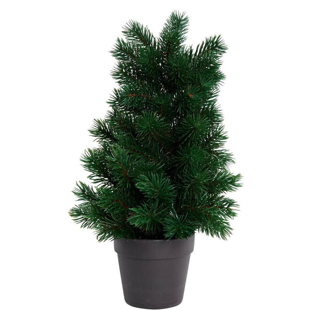 Fotografie TREE OF THE MONTH Vánoční stromek 40 cm