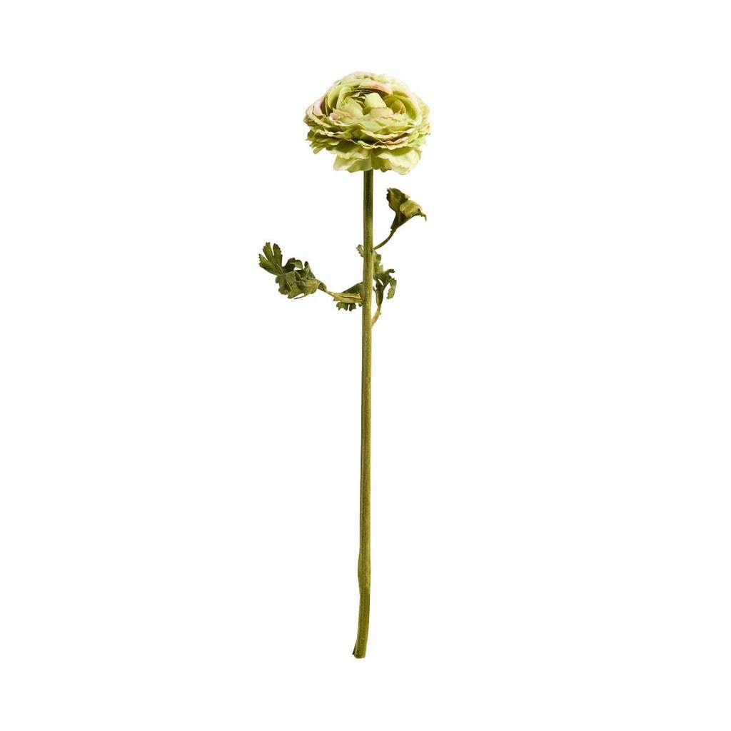 FLORISTA Pryskyřník 48 cm - zelená