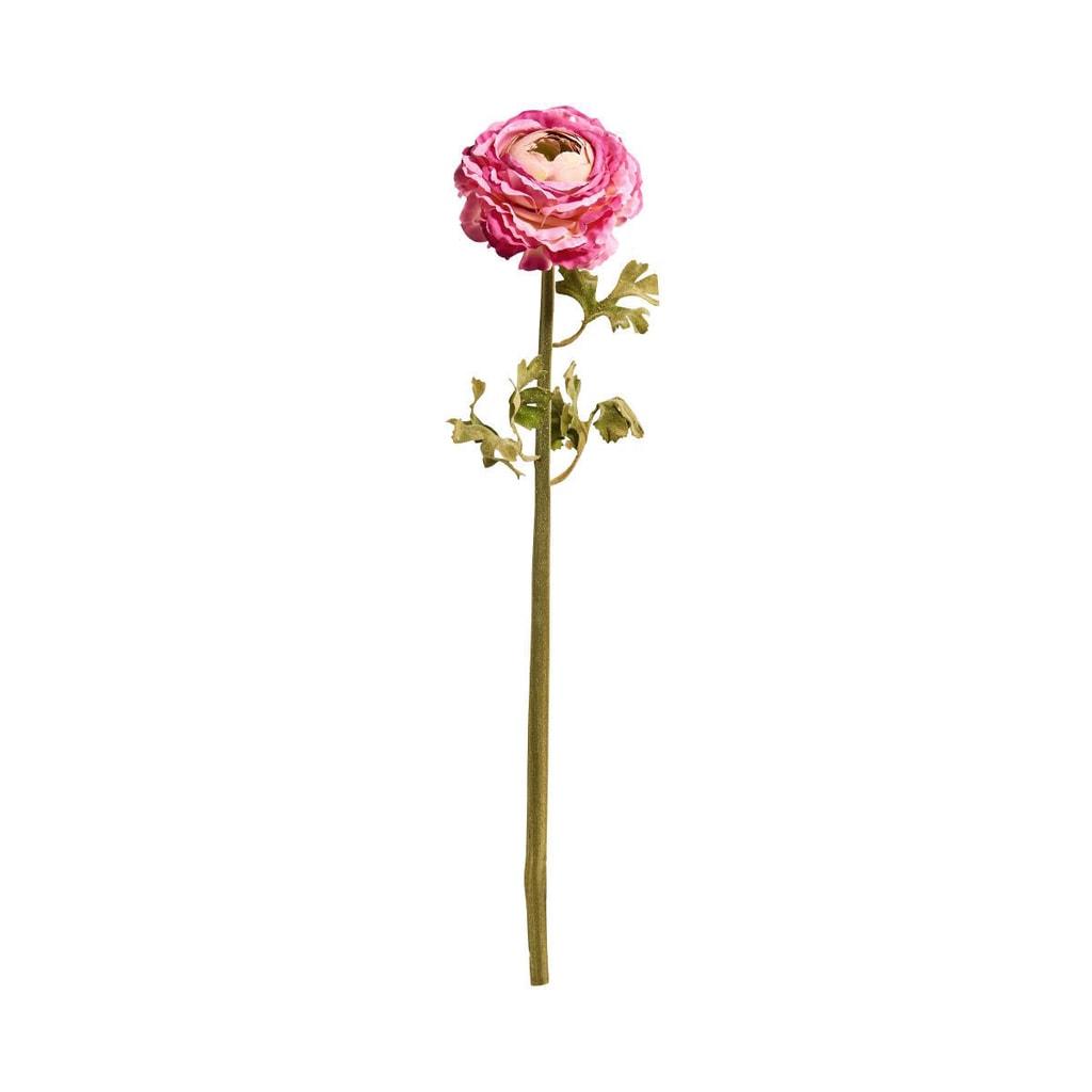 FLORISTA Pryskyřník 48 cm - růžová