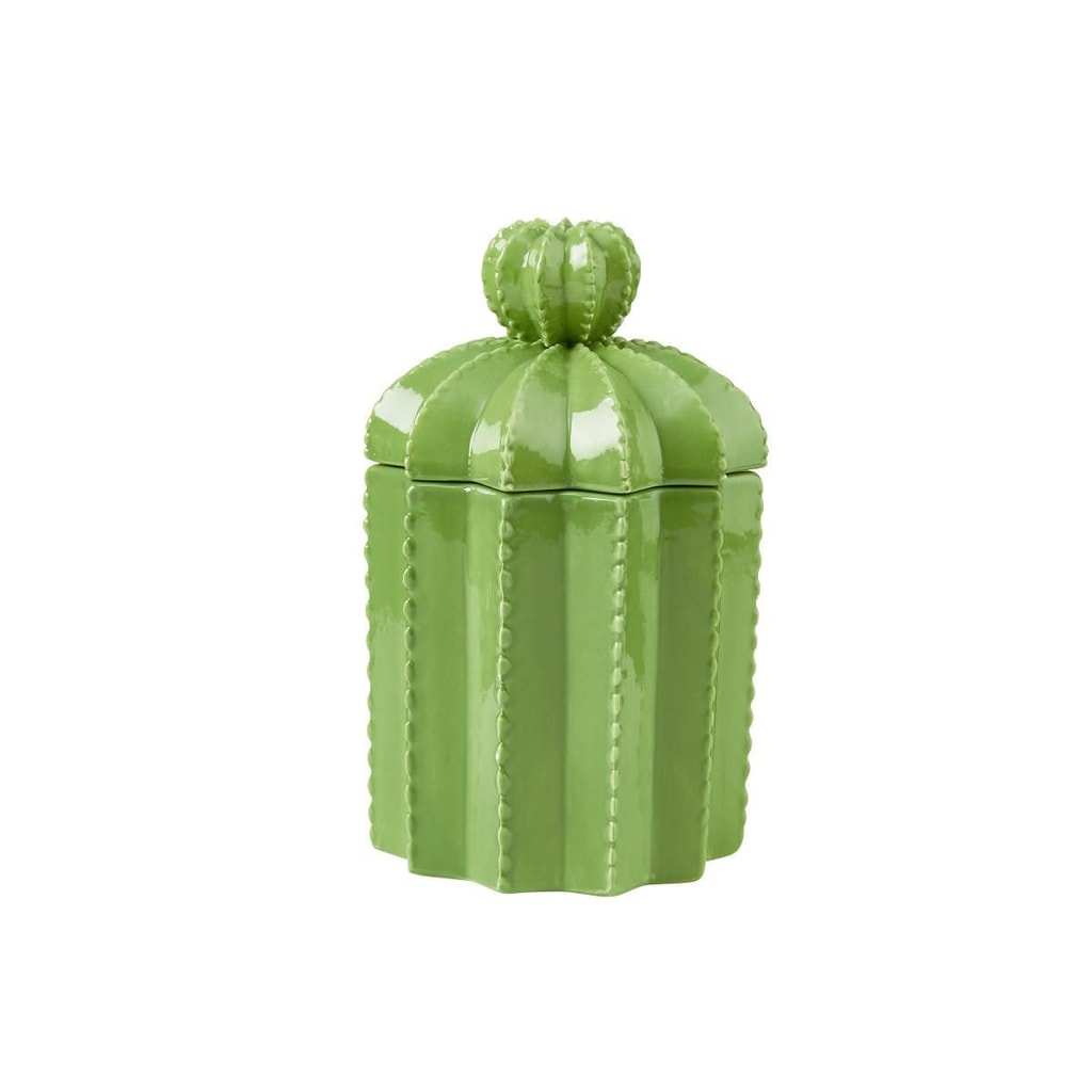 CACTUS Dóza s víkem 18,5 cm - zelená