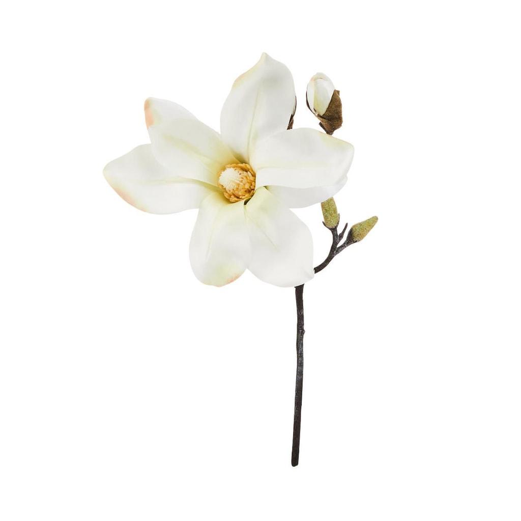 FLORISTA Magnólie 33 cm - krémová