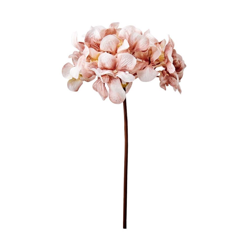 WINTERGREEN Hortensie 77 cm - sv. růžová
