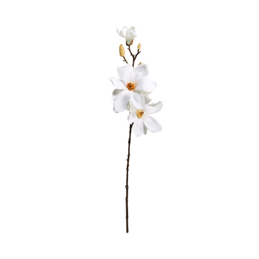 FLORISTA Magnólie 68 cm - krémová