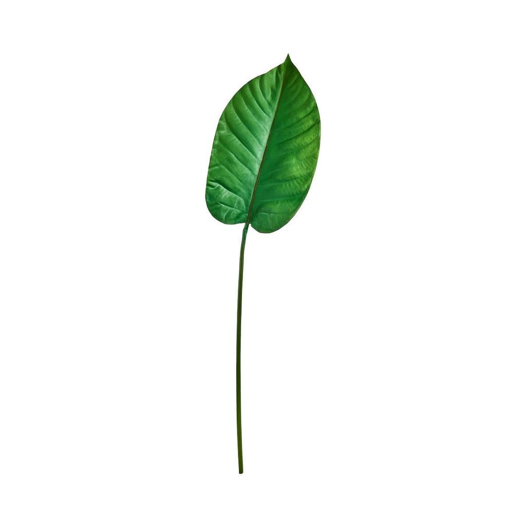 FLORISTA List velký 100 cm
