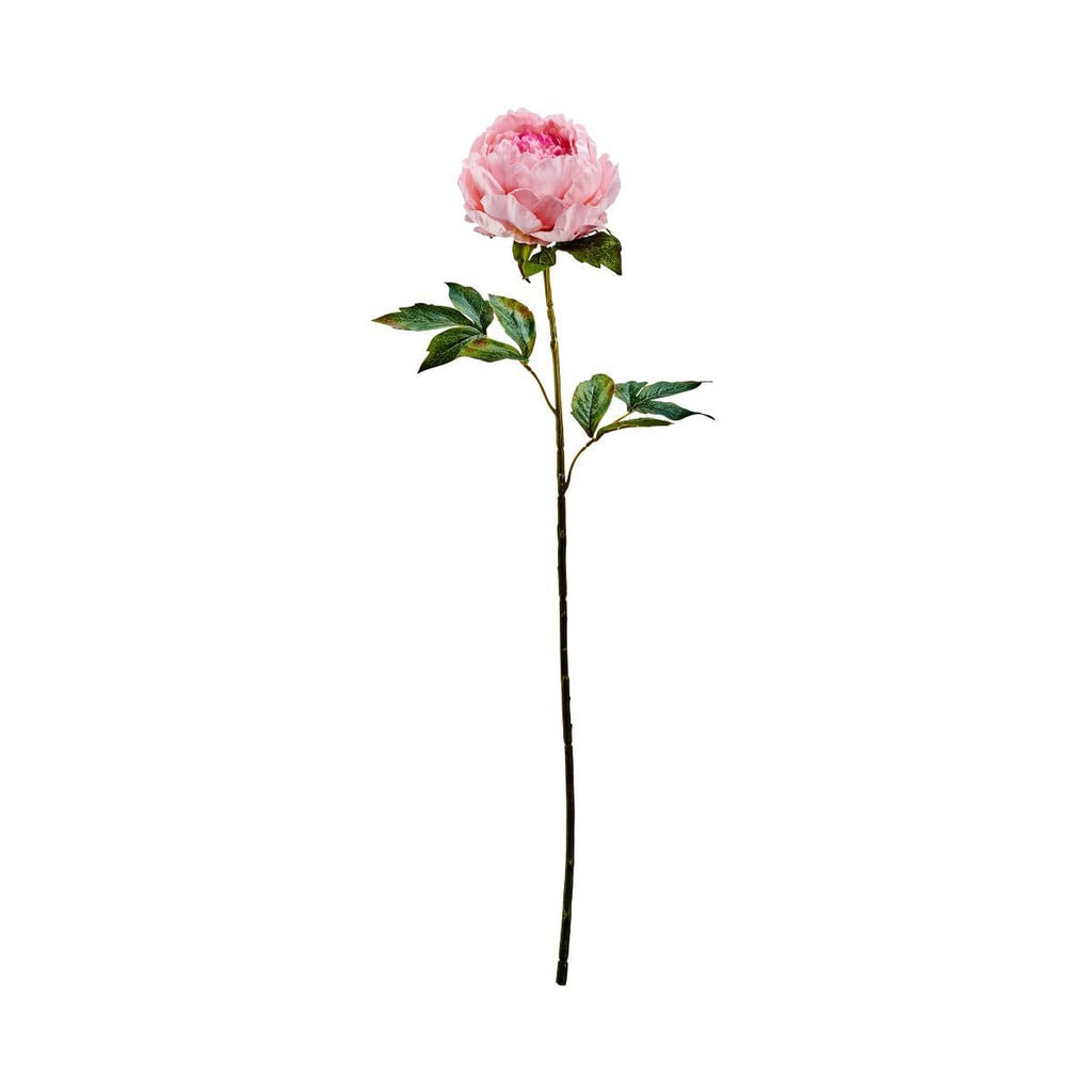 FLORISTA Pivoňka 75 cm - sv. růžová