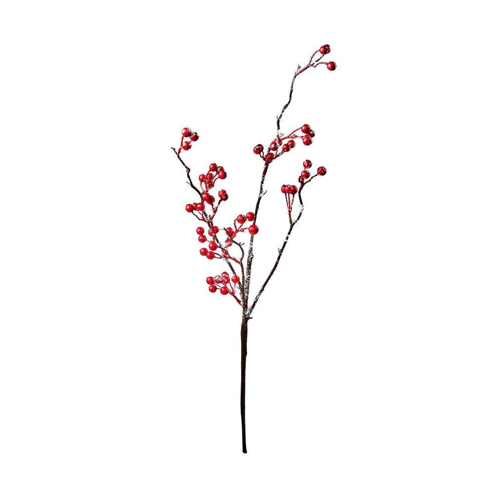 WINTERGREEN Větvička s bobulkami omrzlá 54 cm