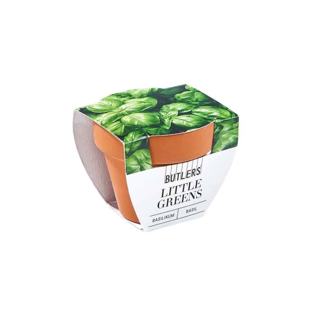 LITTLE GREENS Mini květináč s bazalkou