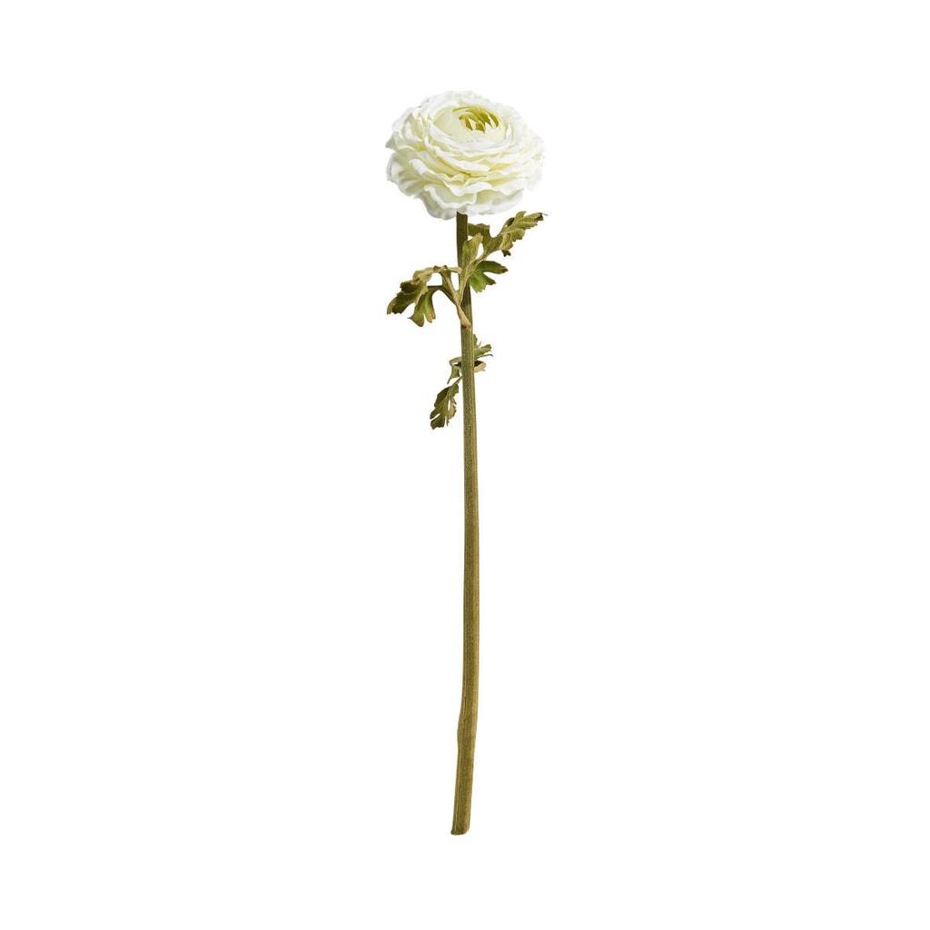 FLORISTA Pryskyřník 48 cm - krémová
