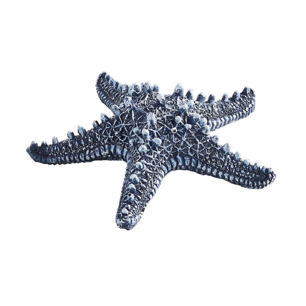 CORAL BEACH Mořská hvězdice - modrá