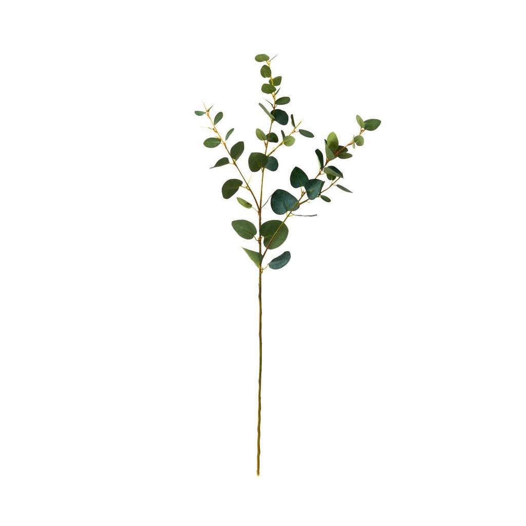 FLORISTA Eukalypt větvička - zelená